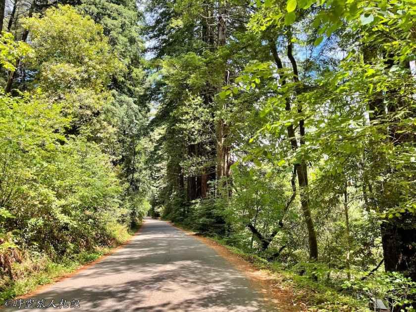 Samuel P Taylor State Park 8