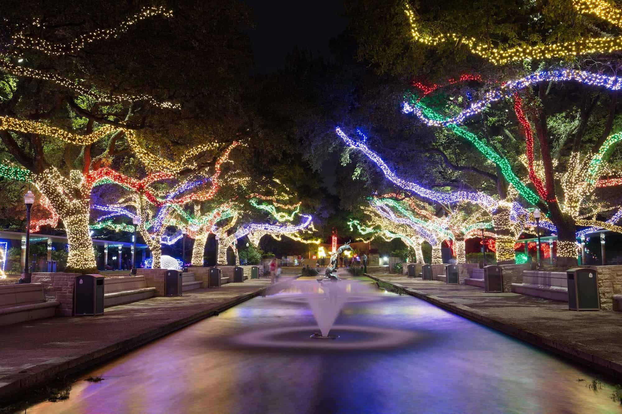 Zoo Light Prices Houston