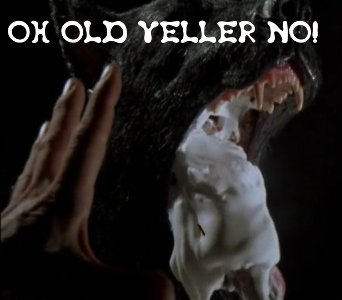 OH OLD YELLER NO!