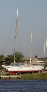 Skipjack Anna McGarvey