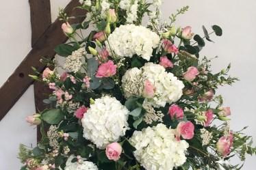 Peonies Vs Garden Roses Triangle Nursery
