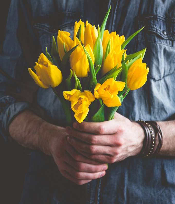 Tulips | Wholesale Flowers & Accessories for Everyone | Triangle Nursery Ltd