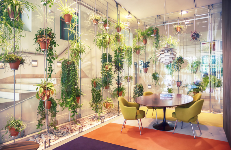Biophilia-in-office-design-4-ways-to-bring-nature-into-the-office-2