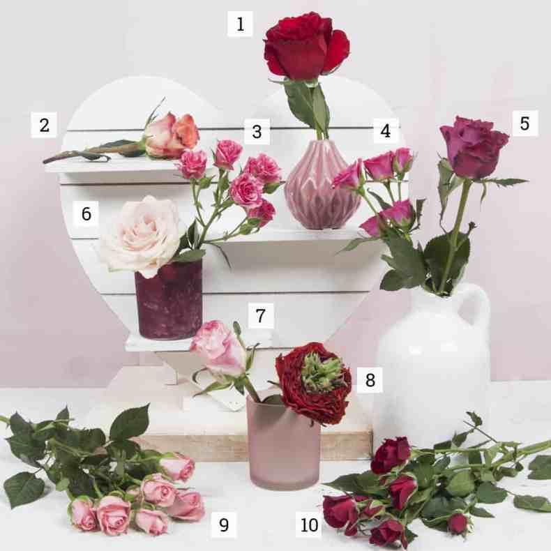 Valentine Roses - Trendy