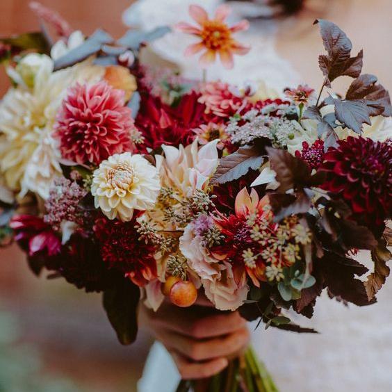September Flowers - Triangle Nursery