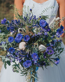 Blue Flowers - Triangle Nursery Ltd