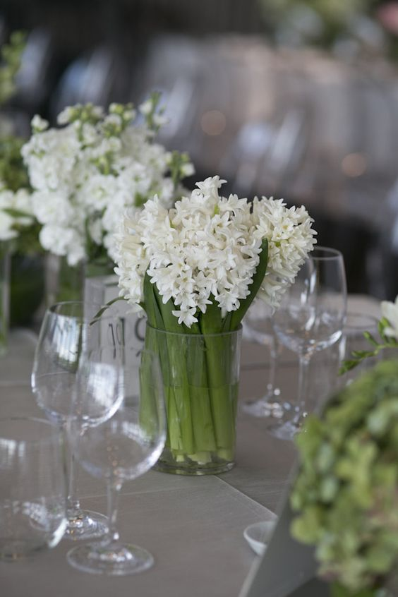 Hyacinths Table Centrepiece