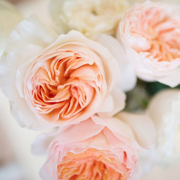 DIY Jug Arrangement with Garden Roses