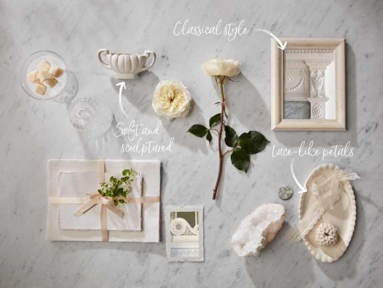 Flower Guides with Triangle Nursery