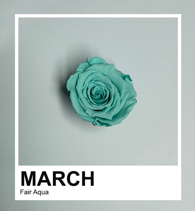 March Series: Fair Aqua