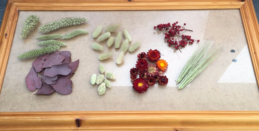 How to Guides and Tutorials with Dried Flowers with Triangle Nursery