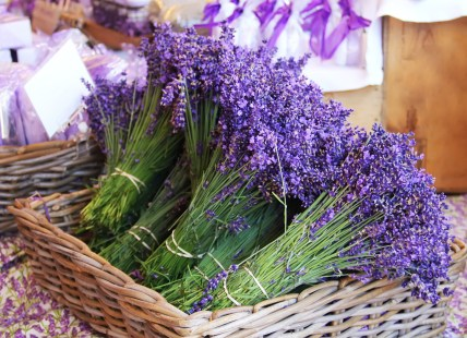 Lavender can help you to sleep better