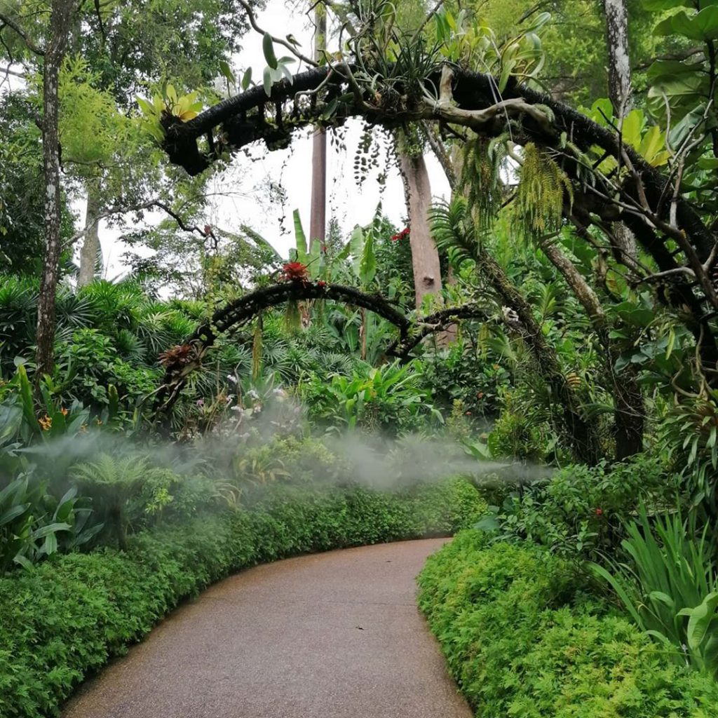 Now that it's reached more than 150 years of age, Singapore Botanical Garden becomes one of the popular attractions in Singapore