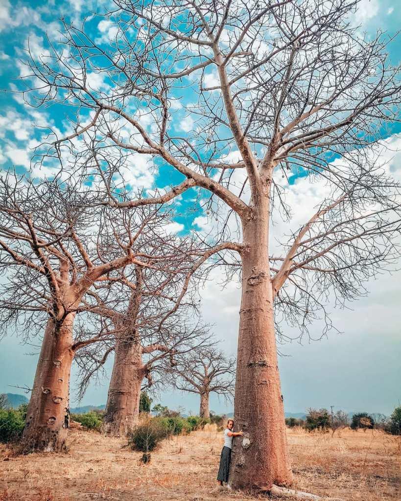 Keindahan Alam di Malawi