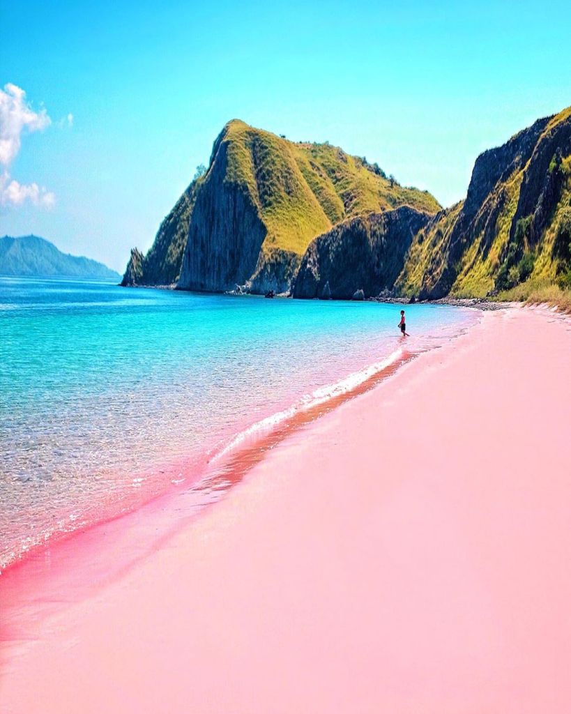 Pink Beach or Pantai Merah in Indonesia is one of seven pink beaches on the planet