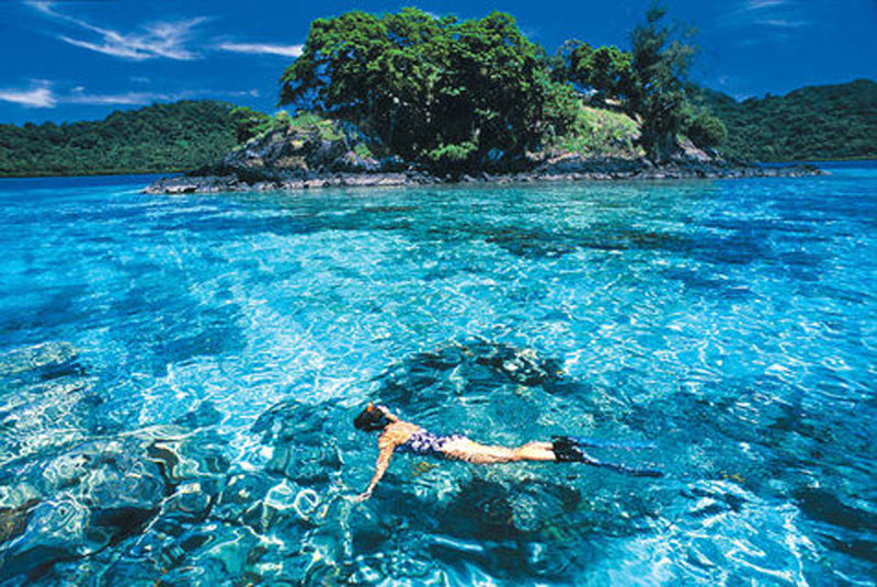 During your Malaysia trip, make sure you go to Palau Paya to meet the sharks