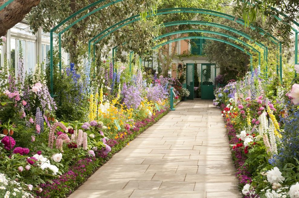 Discover the Orchid garden, there are over 3000 varieties!
