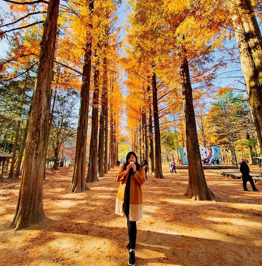 Best Places to Visit in Seoul During Spring, Summer, Autumn and Winter, Nami Island