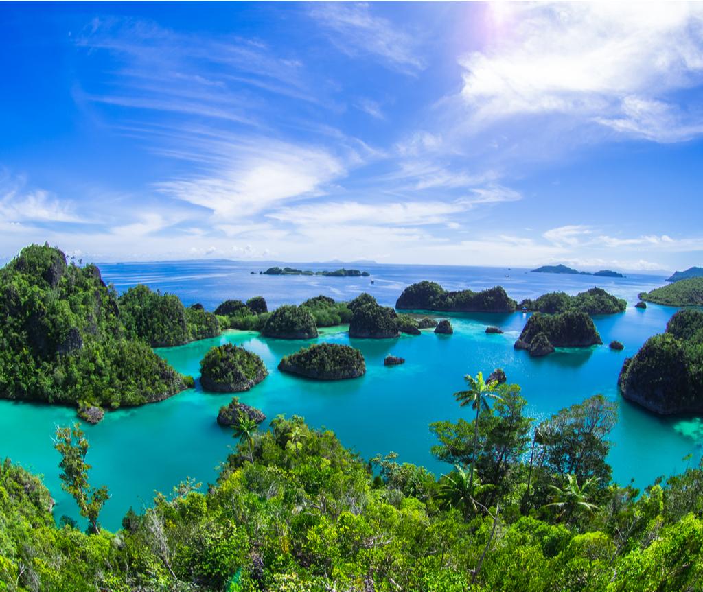Pulau Raja Ampat terkenal dengan batu karang dan hidupan laut