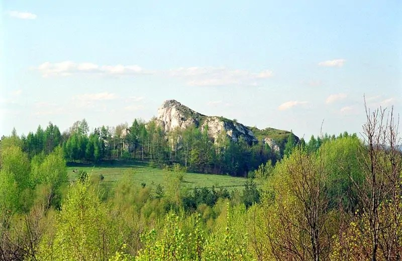 Góra Birów