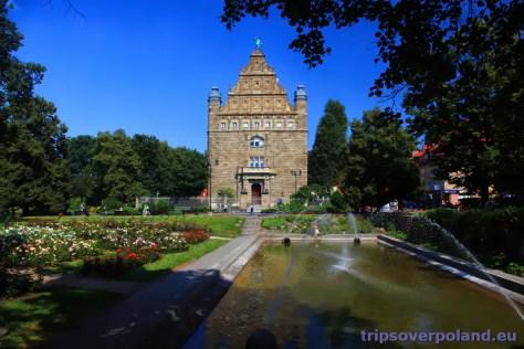 ogródzie przed Muzeum Uniwersyteckim w Toruniu