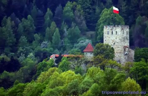Zamek Tropsztyn w Wytrzyszce