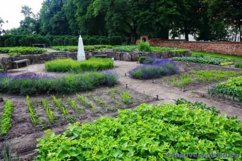 Nakomiady -  ogród warzywny