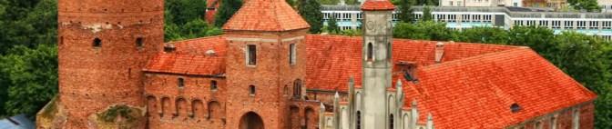 Zamek w Reszlu'2008