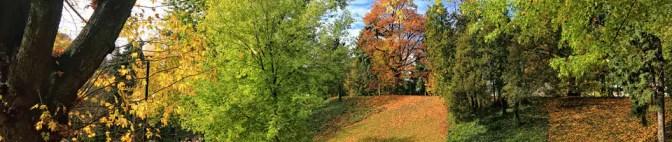 Zaproszenie na jesienny spacer