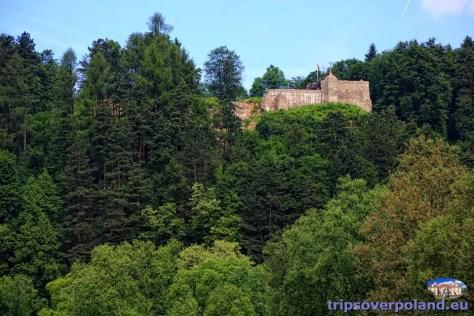 Zamek w Muszynie