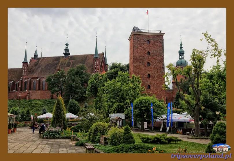 Frombork'2014