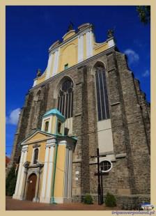 Kamieniec Ząbkowicki'2015