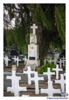 https://pl.wikipedia.org/wiki/Cmentarz_Komunalny_w_Szyd%C5%82owcu