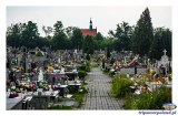 Cmentarz Komunalny w Szydłowcu