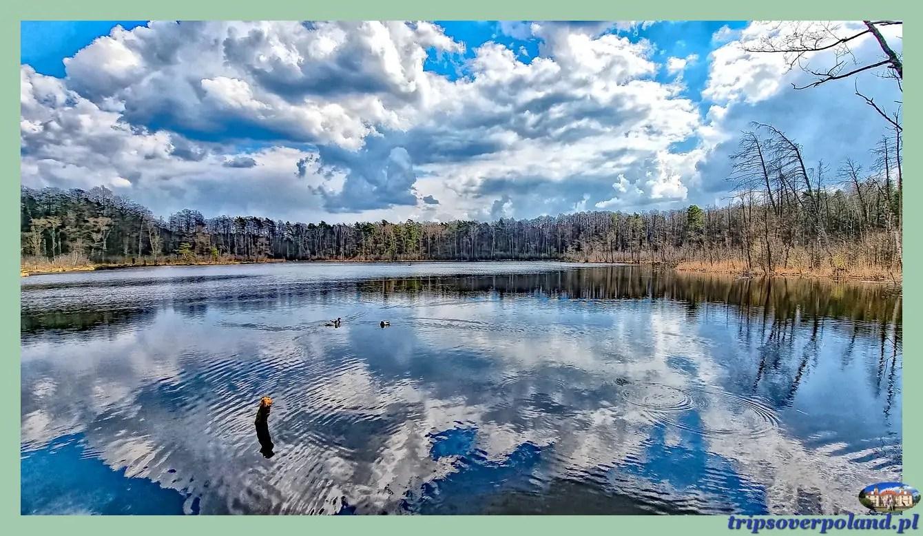 Rezerwat przyrody Na Torfach - Jezioro Torfy