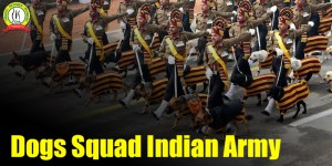 What Are Dog Squads In Indian Army ?