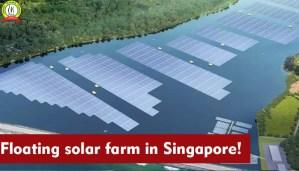 Floating Solar Farm in Singapore!