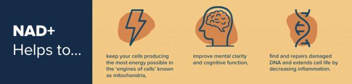 NAD Health Benefits