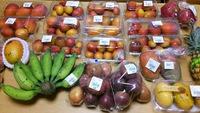 沖縄で安くマンゴーを買う方法や選び方!購入場所や品種まで