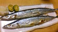 美味しい秋刀魚の選び方