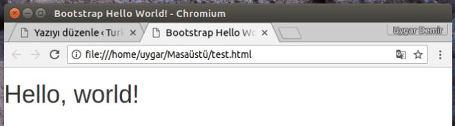 Bootstrap Örneği.