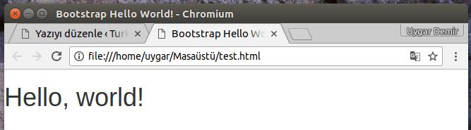 Bootstrap Nedir