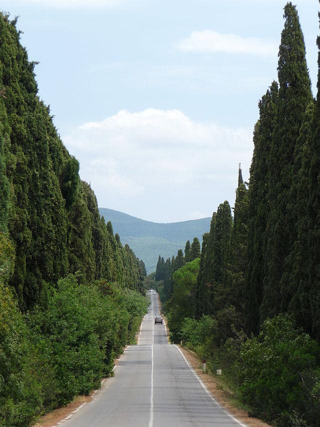 03 Viale dei Cipressi, Bolgheri
