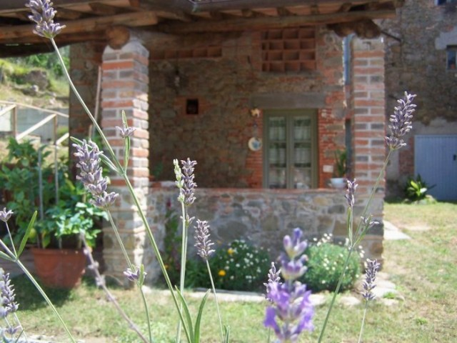 Holiday accommodation in Lucca S301_002