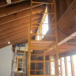 Double Scaffolding for Bird Hole Fix