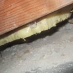 Spray foam gap under stairs