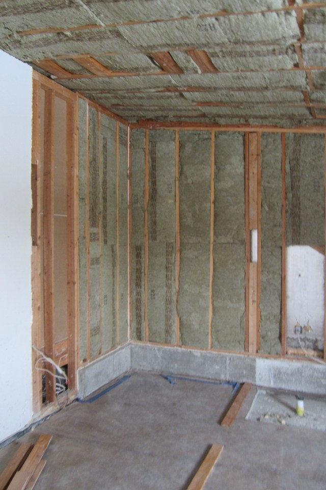 Roxul Insulation in Walls