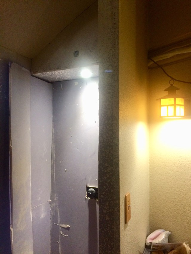 Shower light and switch