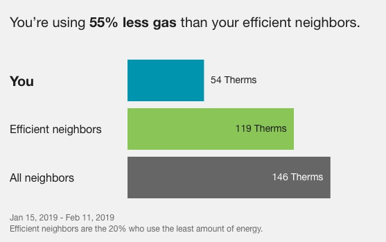 Gas Usage and Neighbors for Feb 2019