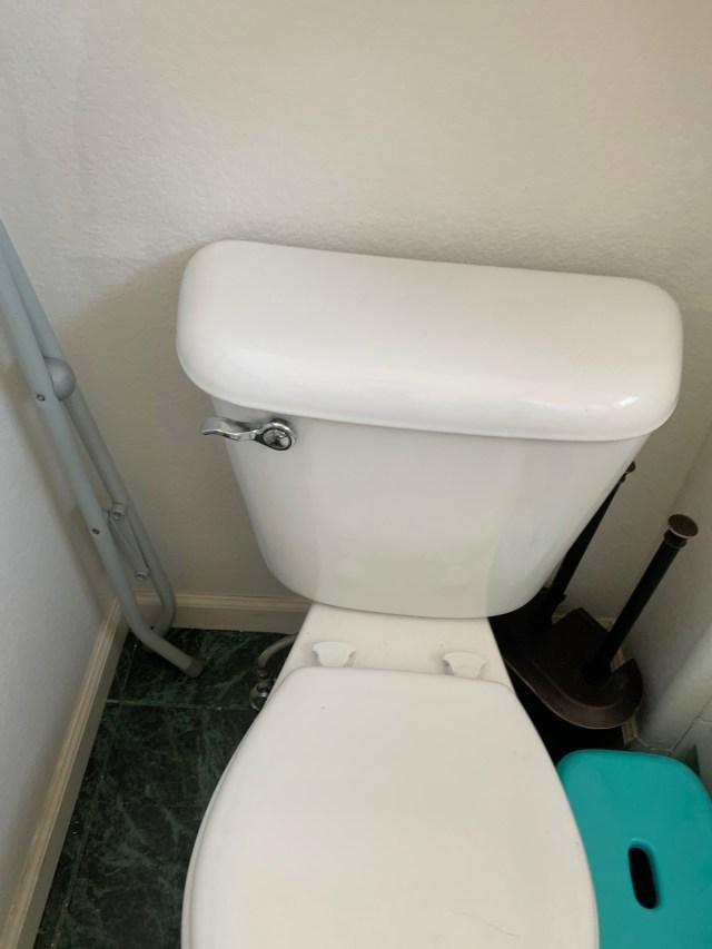 Lever style dual flush